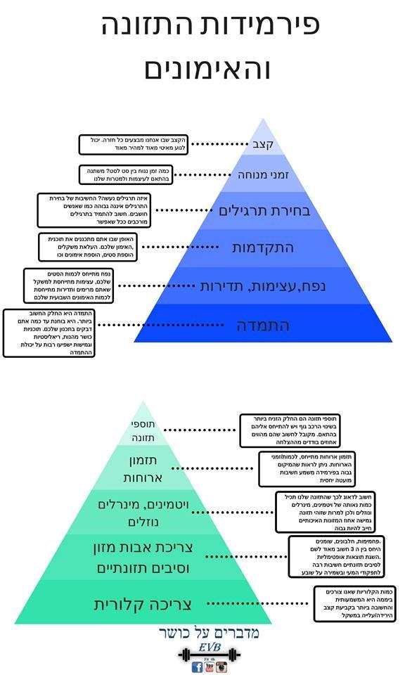 פירמידות התזונה והאימונים